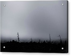 Acrylic Print featuring the photograph Storm by Cat Connor