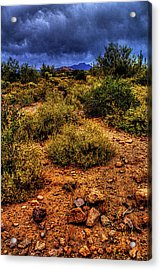 Storm Clouds Over The Sonoran Desert In Spring Acrylic Print