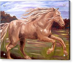 Acrylic Print featuring the painting Storm by Diane Daigle