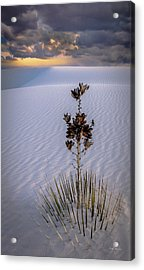 Storm Light At White Sands Acrylic Print