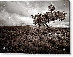 Storm Moving In - Sepia Acrylic Print by Christopher Holmes