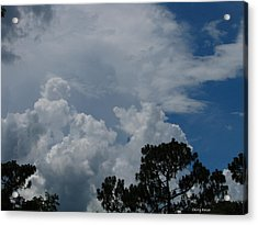 Storm Moving In Acrylic Print by Greg Patzer