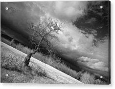Storm Over Dead River Acrylic Print