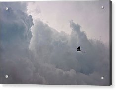 Storm Rover Acrylic Print by JAMART Photography