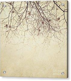 Stormbound Acrylic Print by Priska Wettstein