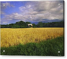 Stormy Old Barn In Wheat Field 2 Acrylic Print