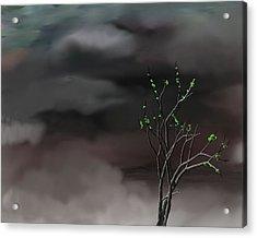 Stormy Weather Acrylic Print by David Lane