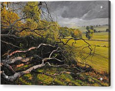 Stormy Weather Acrylic Print by Harry Robertson