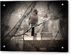 Stormy Window Acrylic Print