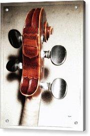 Straduari  Acrylic Print by Steven Digman