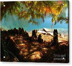 Strange Roots Acrylic Print by Misha Bean