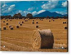 Straw Bale In A Field Acrylic Print