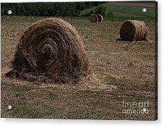 Straw Bales Acrylic Print