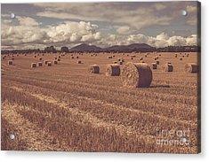 Straw Bales In A Field 4 Acrylic Print