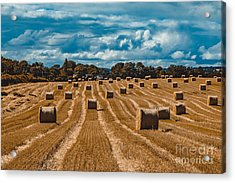 Straw Bales In A Field Acrylic Print