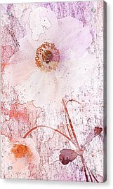 Strawberry Crush Acrylic Print by John Edwards