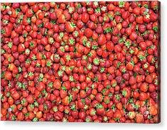 Strawberry Fest Acrylic Print