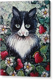 Strawberry Lover Cat Acrylic Print
