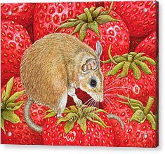 Strawberry Mouse Acrylic Print by Ditz