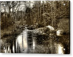 Acrylic Print featuring the photograph Stream I by Greg DeBeck