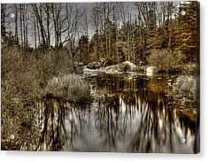 Acrylic Print featuring the photograph Stream II by Greg DeBeck