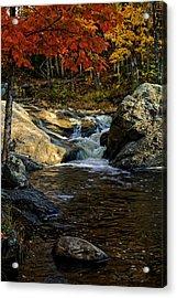 Stream In Autumn No.17 Acrylic Print