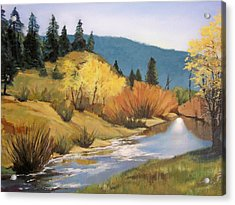 Stream In Modoc County Acrylic Print by Maralyn Miller