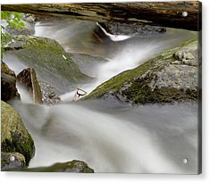 Stream In Motion Acrylic Print