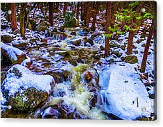 Stream In Snow Covered Woods Acrylic Print