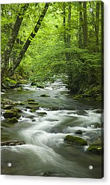 Stream In The Smokies Acrylic Print by Andrew Soundarajan
