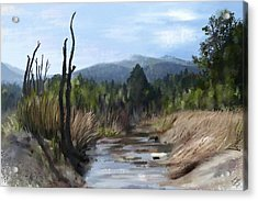 Acrylic Print featuring the painting Stream by Ivana Westin
