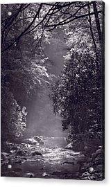 Stream Light B W Acrylic Print by Steve Gadomski