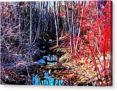 Stream Red And Blue Acrylic Print