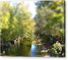 Acrylic Print featuring the photograph Stream Reflections by EricaMaxine  Price