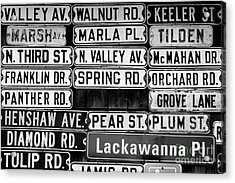 Acrylic Print featuring the photograph Street Names by Colleen Kammerer