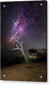 Striking Milkyway Over A Lone Tree Acrylic Print