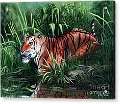 Stripes Acrylic Print by Bretislav Stejskal