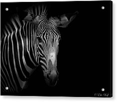 Stripes Number 5 Acrylic Print