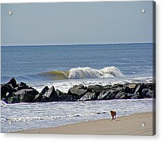 Strollin' The Jersey Shore Acrylic Print