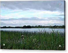 Acrylic Print featuring the photograph Strolling By The Lake by Terence Davis