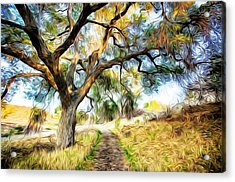 Strolling Down The Path Acrylic Print
