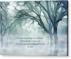 Strongly Rooted Acrylic Print