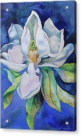 Study In Blue Acrylic Print by Catherine Moore