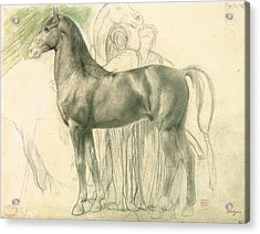Study Of A Horse With Figures Acrylic Print by Edgar Degas