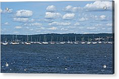 Study Of White On Blue Sailboats Clouds And Seagulls Acrylic Print by DazzleMe Photography