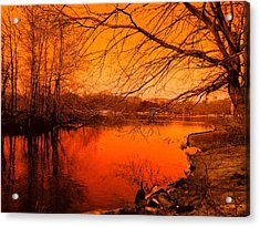 Studying The Sunset Acrylic Print