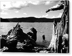 Stump Lake Acrylic Print by Tom Melo