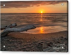 Stump Sunset Acrylic Print