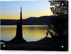 Stumped At Sunset Acrylic Print