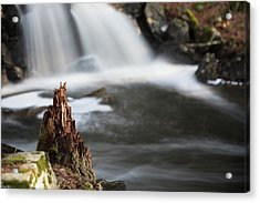 Stumped At The Secret Waterfall Acrylic Print